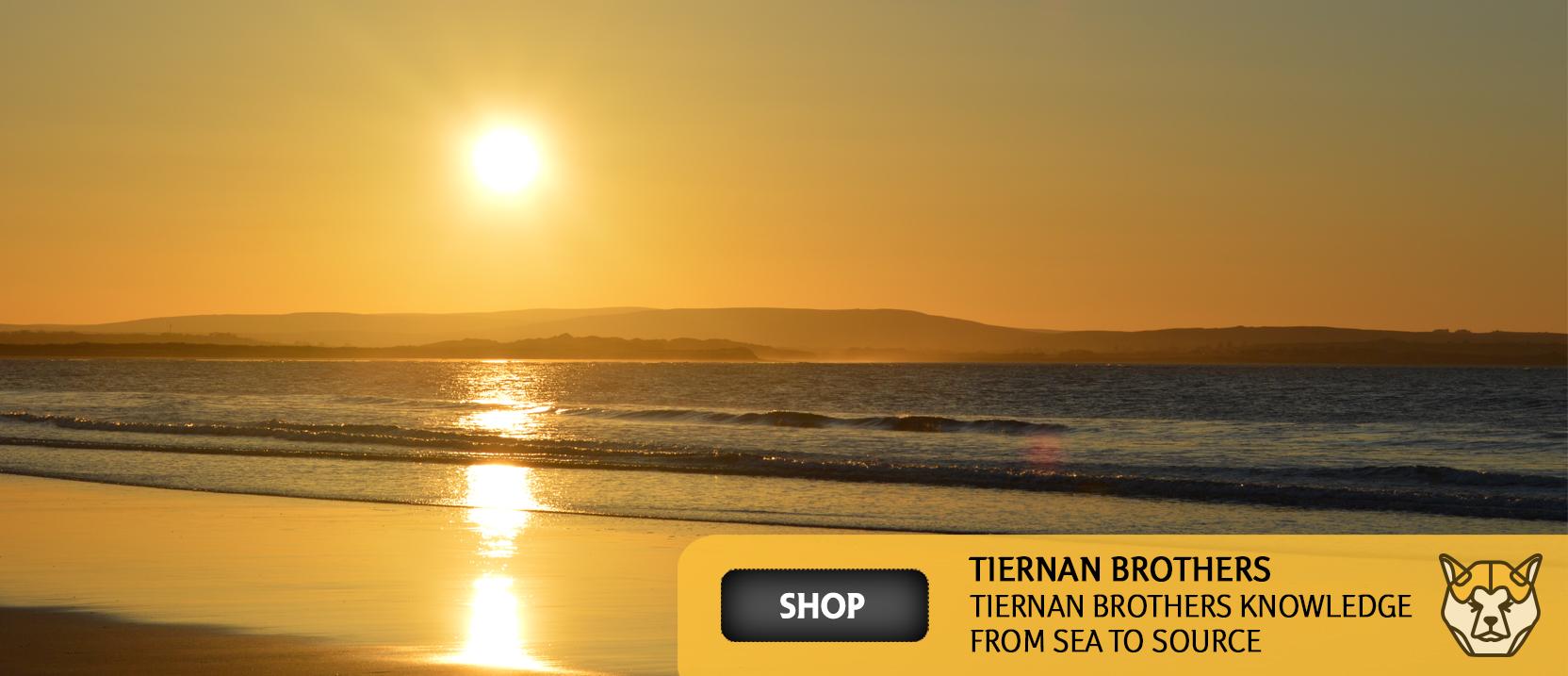 Tiernan-Brothers-Shop