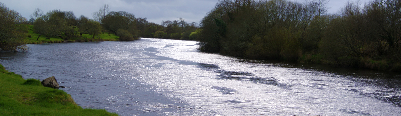 River-Moy-Banks-Mayo